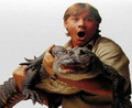 Un Ultim Omagiu In Memoria Lui Steve Irwin